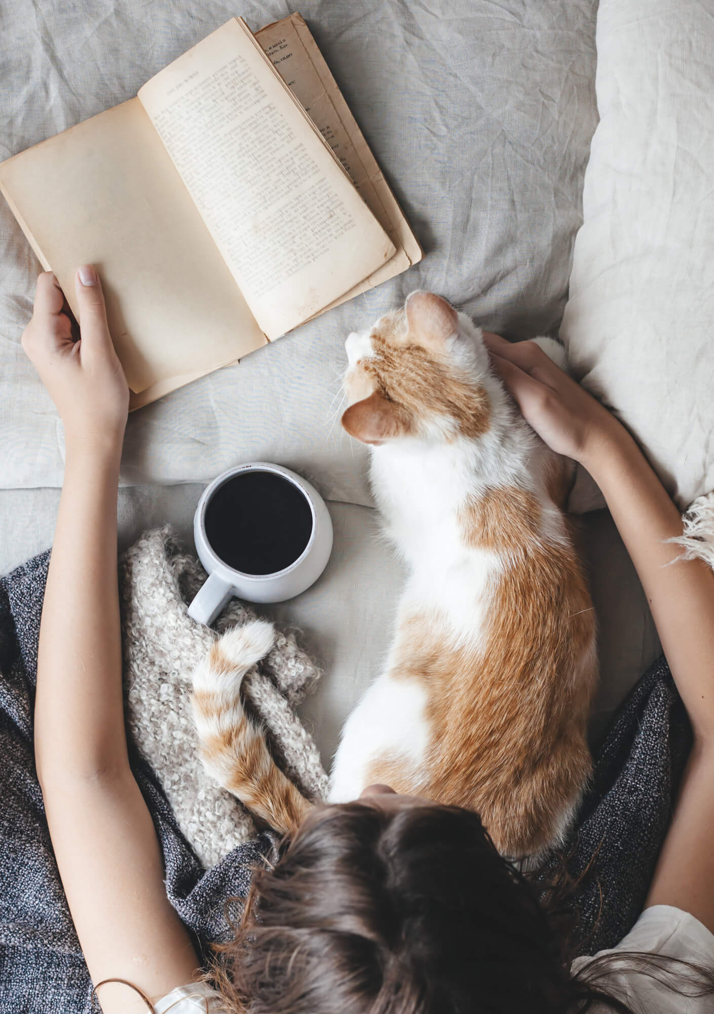 Reading with a coffee and cat